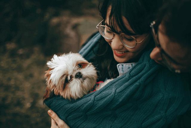 keep outside dog warm