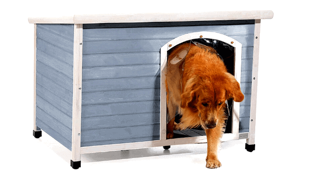 The Ultimate Guide to Top 7 Large Dog Houses For Outside