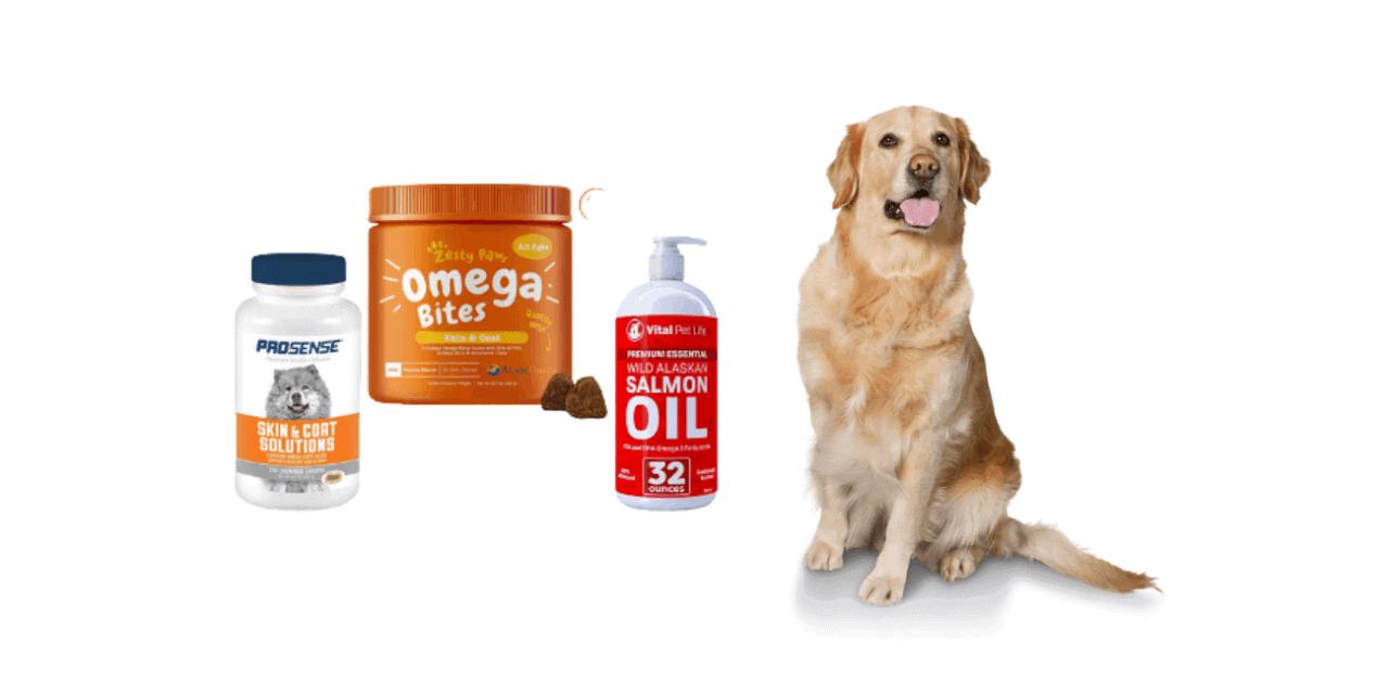 5 Best dog shedding supplements | mrtoppet Tips